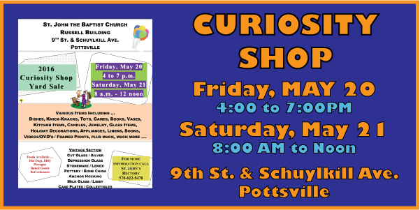 Curiosity Shop 2016v